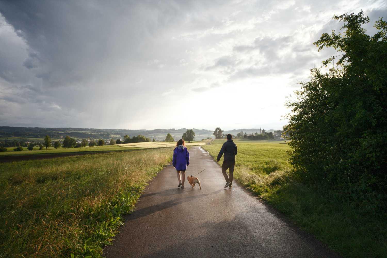 hond uitlaten en wandelen