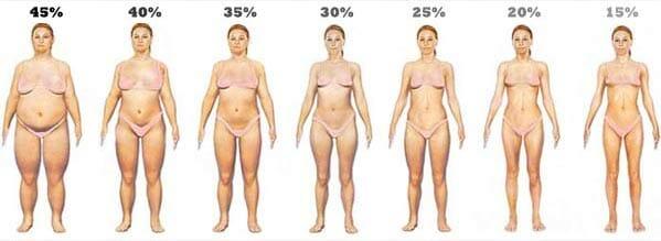 percentage lichaamsvet bij vrouwen