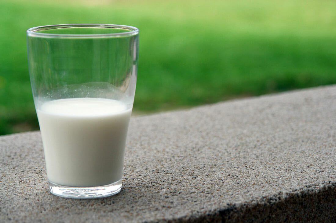 geitenmelk als eiwitbron